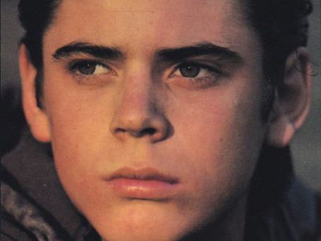 Ponyboy Curtis—My Book Crush