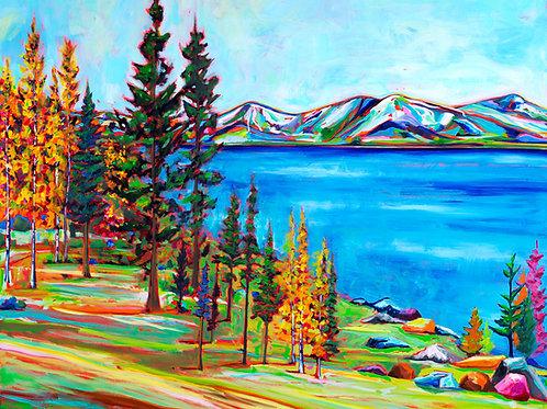 Van Vleck's Tahoe
