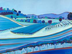 Delaney Blue Vineyards