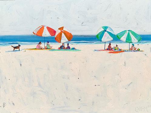 Summer Umbrellas and Ollie