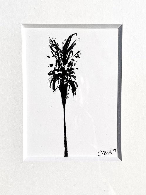 Framed Laguna Palm