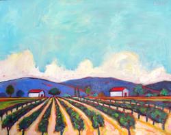 Two Barn Vineyard