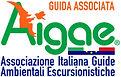 logo Aigae.jpg