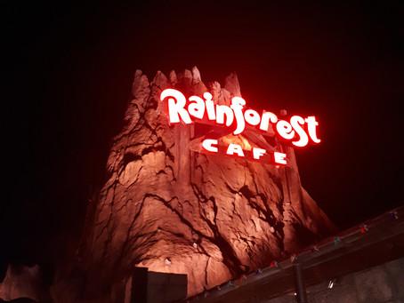 Rainforest Cafe, um restaurante selvagem
