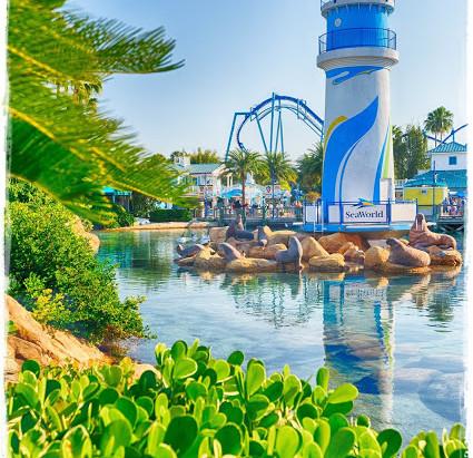 SeaWorld reabre parques de Orlando em fases a partir do dia 11 de junho
