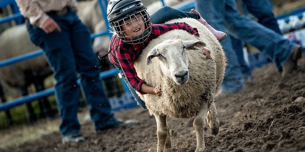 Mutton Busting Entry
