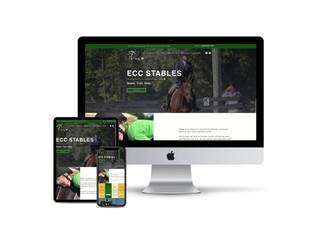 Website Design for Equestrian Trainer