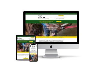 Website Design for Equestrian Camp