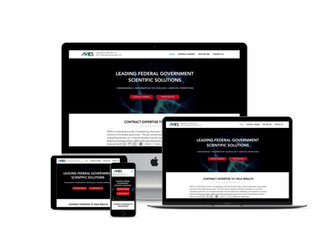 Website Design for Federal Government Contractor