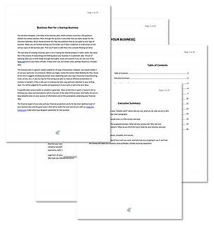 Pro Forma Business Plan Outline Template