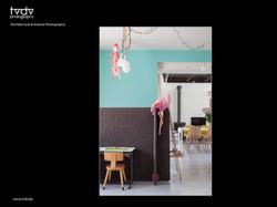 Lies Boelaert architect - verbouwing - Herzele - tvdv photoshoot (2).jpg