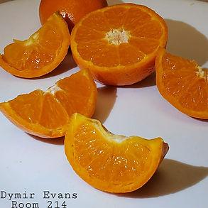 DymirEvans214.jpg