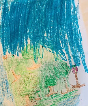 211ChrisClarkBurtonTrees.jpg