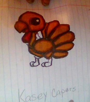 217KaseyCapersTurkey.jpg