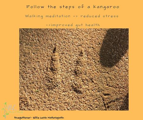 Steps of a kangaroo.png