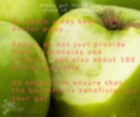 Apples for the gut.png