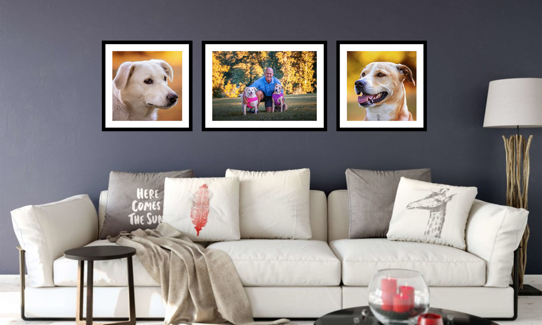 k9photo-choose-your-arrangement-2.jpg