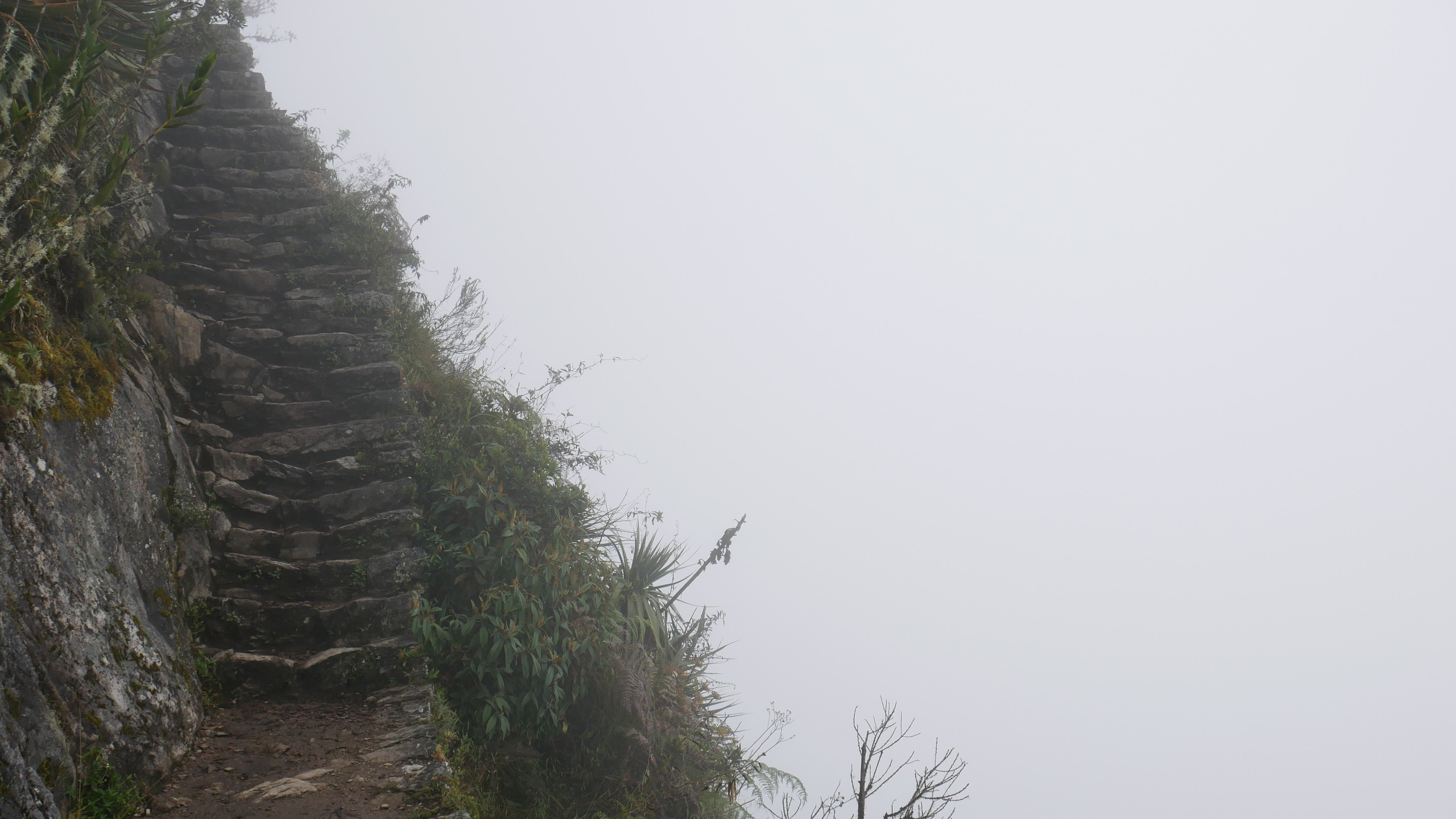 the fog above the Machu Picchu trail to the mountain