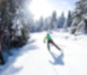 people doing XC skiing in winter