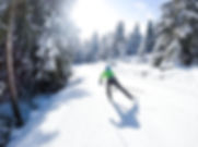 Nordic skiing during winter, frozen forest, sport outdoors
