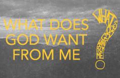 What do you Desire