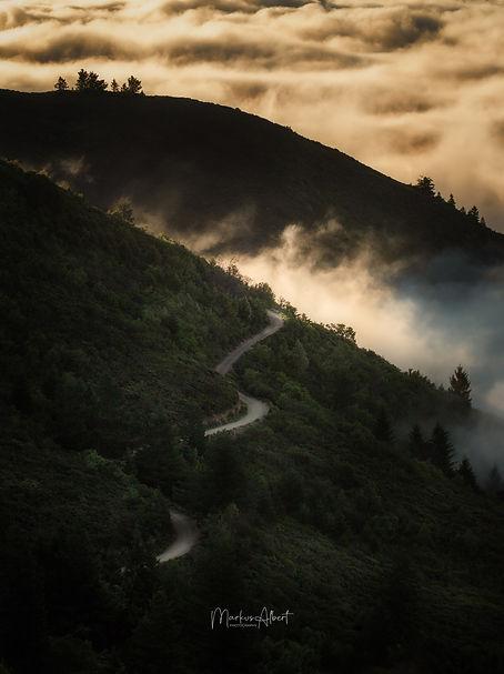 Mt Tamalpais (1 von 1).jpg