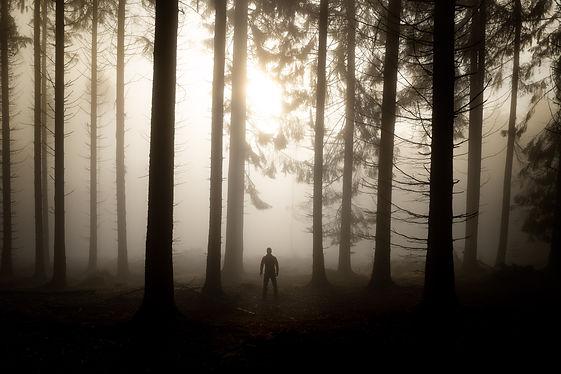 Mann im nebligen Wald
