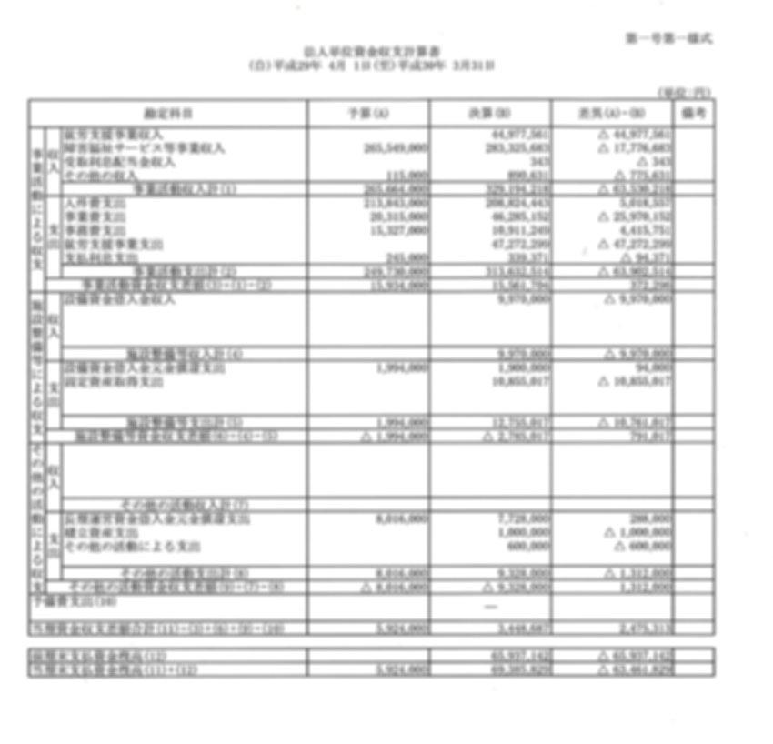資金収支報告書.jpg