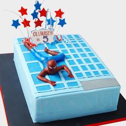 Spiderman Cake SP1289