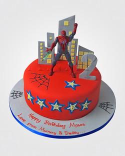 Spiderman Cake SP0978