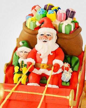 FATHER CHRISTMAS CAKE CS6562.jpg