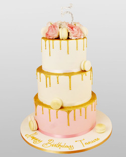 Drip Cake DR8256
