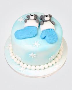 Christmas Cake CS0015