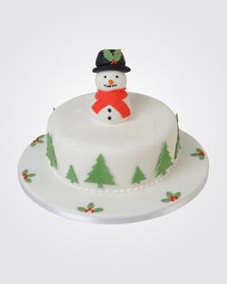 Christmas Cake CS0165