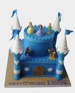 Castle Cake CG5324