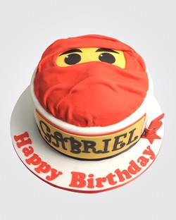 Ninja Cake SP4588
