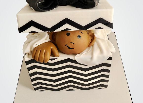 Peeking Baby Cake  CHB5206