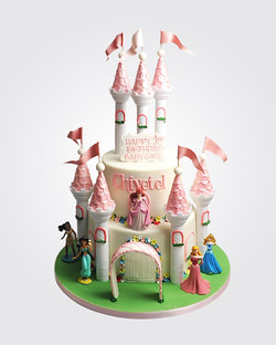 Castle Cake PR4021