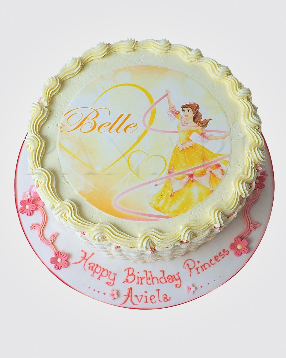 Princess Picture Cake CR9500
