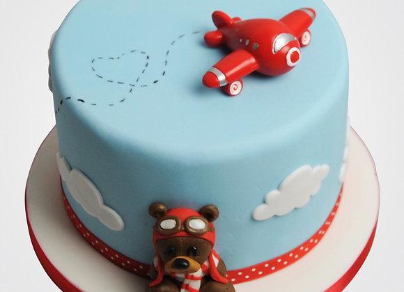 Aeroplane Cake CB8268
