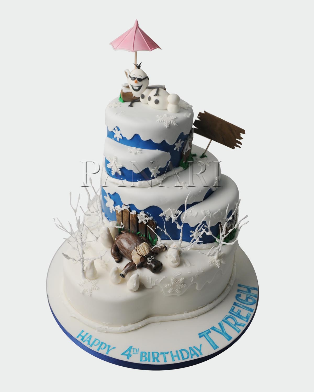 Frozen Cake  PR2608