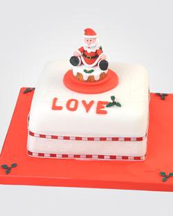 Christmas Cake CS0006