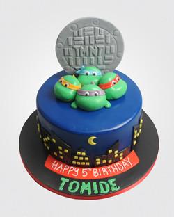 Ninja Turtle cake SP9666