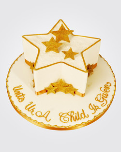 Christmas Cake CS6579