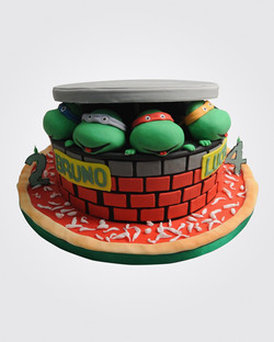 Ninja Turtles Cake SP6386