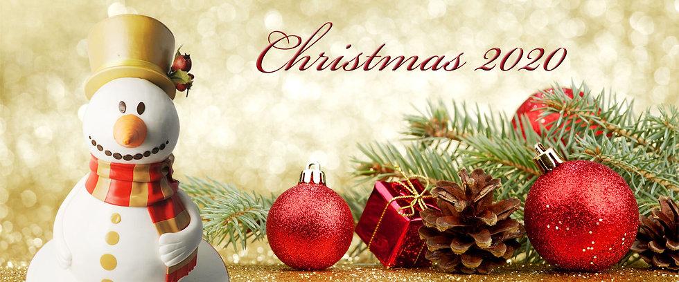 Christmas-2020 copy.jpg