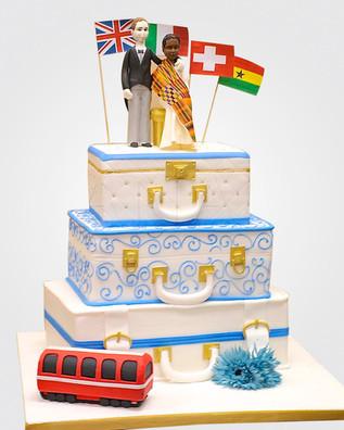Suitcase Cake AFC9502 .jpg