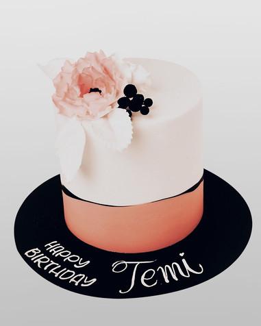 Peachy Temi's Cake CL9874.jpg