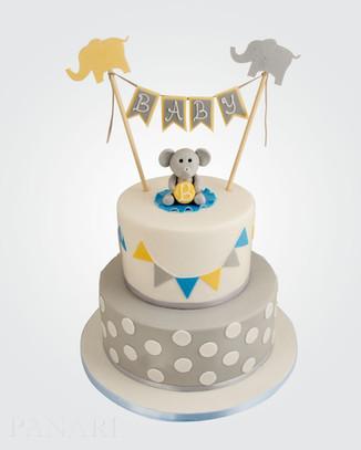 Baby Shower Cake CHB6012.jpg
