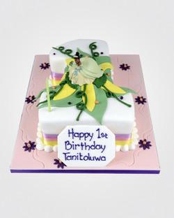 Tiana Number Cake AN0019